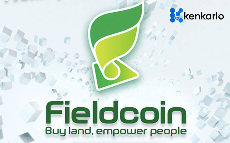 Current Food Storage Impact and Fieldcoin's Approach - Kenkarlo.com